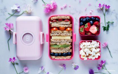 Caja Bento Infantil Monbento Tresor - Moutarde Pink Muestra