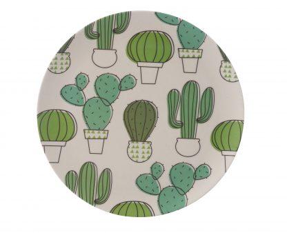 plato-llano-bambu-cactus-janabanana