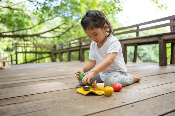 Surtido-de-Verduras-de-Madera-Plantoys-juguete-simbolico.jpg