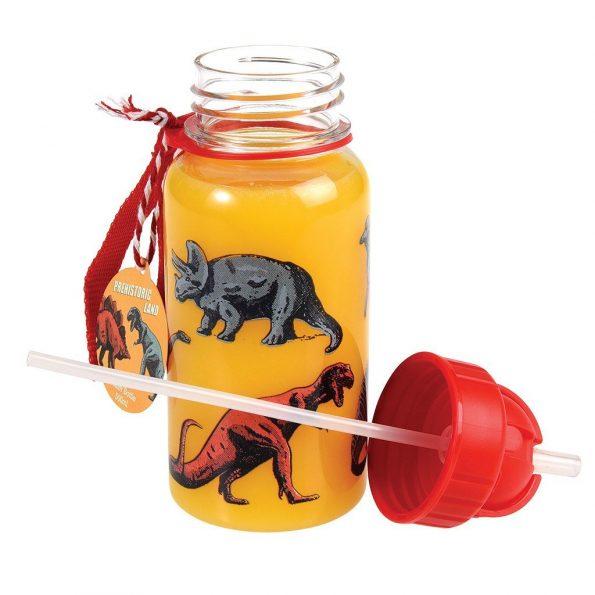 dinosaur-print-kids-water-bottle-27287_4.jpg