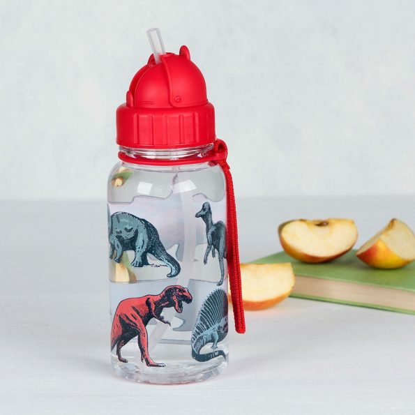 prehistoric-land-water-bottle-27287-lifestyle.jpg